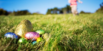 5 Egg-cellent Lockdown Easter Activities at Home